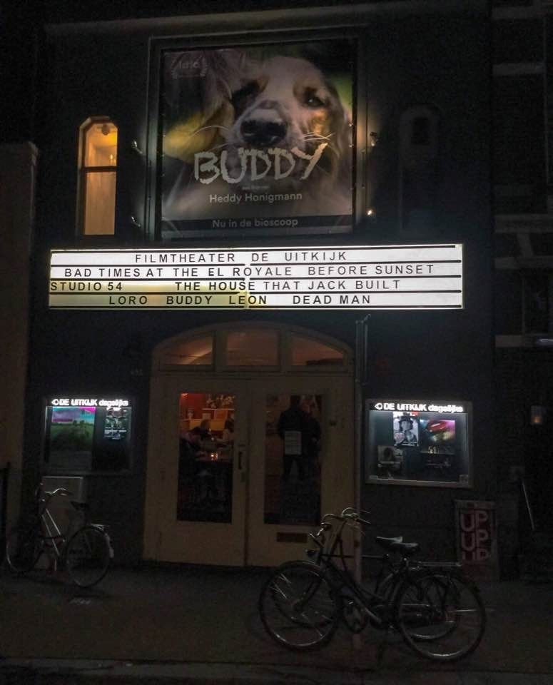 Buddy playing in a cinema